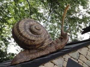 snail Chelsea Flower Show